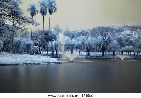 infrared 7