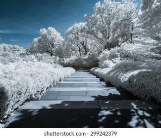 Infrared Garden Park