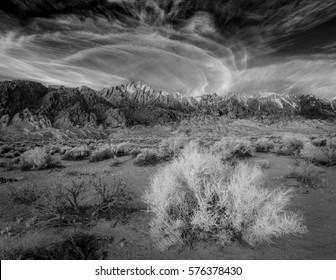 Sarah Fields Photography's Portfolio on Shutterstock