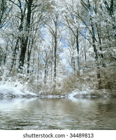 Infrared panoramic picture of a beautiful forest with water reflection