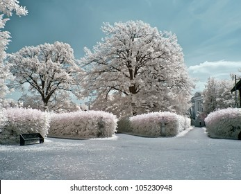 Infra-red photo. Landscape design of farmstead Kuskovo