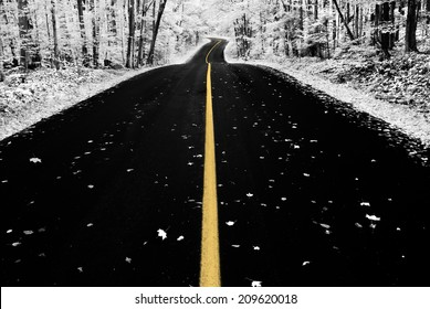 An infrared photo taken of an road through a forest during the autumn season.  Photographed with a 590nm infrared camera.  Selective color.