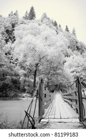 Infrared photography with a bridge and forest