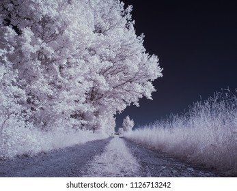 infrared photography - ir photo of landscape under sky with clouds - the art of our world in the infrared spectrum