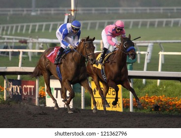 """INGLEWOOD, CA - DEC 8: Garrett Gomez (blue cap) pilots  2 year-old """"Pure Fun"""" to victory in the $500,000 Hollywood Starlet Stakes at Hollywood Park on Dec 8, 2012 in Inglewood, CA."""