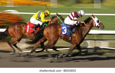 "INGLEWOOD, CA - JULY 2: ""Unhitchthetrailor"" (No. 3) with jockey David Flores, outruns ""Exotic Slew"" with Victor Espinoza, to break his maiden at Hollywood Park on July 2, 2011 in Inglewood, CA."