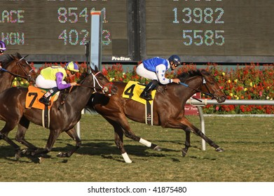 "INGLEWOOD,CA - 29 NOV: ""The Mailet"" (R) under jockey Joel Rosario, wins the The Miesque Stakes at Hollywood Park on November 29, 2009 in Inglewood, CA."