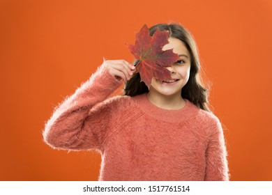 Ingredient in baking and sweetener. Maple syrup. Little child hold maple leaf. Small girl smiling with maple leaf. Maple syrup is often used as condiment for pancakes waffles oatmeal or porridge.