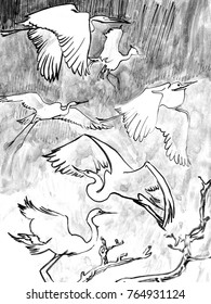 Ink drawing of flying birds