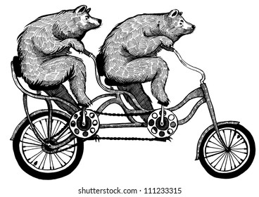 Ink drawing of two bears riding tandem bicycle