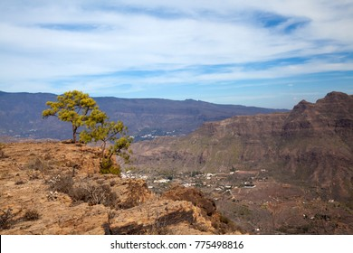 Inland Gran Canaria, sunny day in December, view over Barranco de Fataga