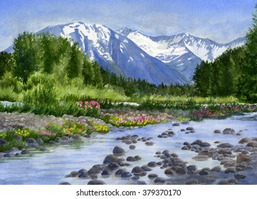Inlet Mountain View from Glacier Creek.  Watercolor Alaska landscape with snow capped mountains in background, creek, wildflowers, rocks in foreground