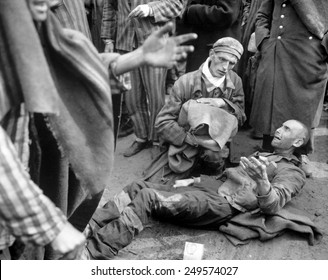 Inmates of Wobbelin concentration camp awaiting transport to the hospital. One breaks into tears when he learns he is not leaving with the first group. May 4, 1945, Germany, World War 2.