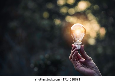 Innovation and energy concept of hand hold a light bulb and copy space for insert text.