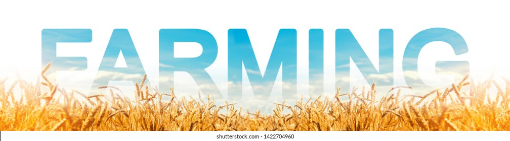 The inscription Farming on the background of a wheat plantation field. Agribusiness and agro-industry. Farm Growing food for resale and processing. innovative technologies, equipment and fertilizers.