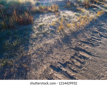 The inscription on the sand made by the surf of the Irtysh River