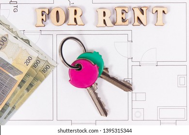 inscription for rent, home keys and currencies euro on electrical  construction diagrams of housing plan