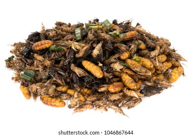 Insect Food, close up of fried insects isolated on white background