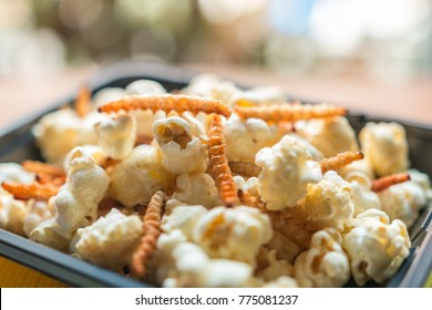 Insect food - Closeup, Popcorn with bamboo worm fried insect on the black plate. Insect food is the healthy meal high protein diet concept, popular snack food in Thailand