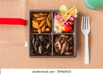 Insect food collection - Cricket, worm insects with vegetable salad in the brown food boxes. Healthy meal high protein diet concept. Top view.