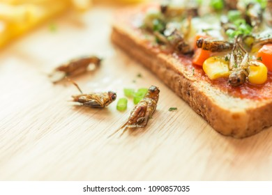 Insect food - Cricket, Edible insects with carrots, peas, corn, mozzarella cheese and slide bread on the wooden tray. Insects are high in protein preferable for people of Thailand.