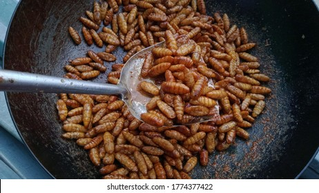 Insect food,worm insect or chrysalis silkworm fried in pan and on spatula, selective focus.strange food concept.weird food concept.Thai street food concept.