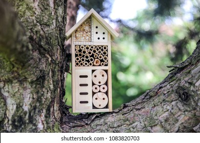 Insect hotel with compartments and natural components