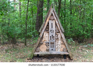 Insect hotel with compartments and natural components placed in the forest