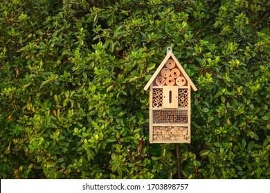 Insect hotel in a green hedge gives protection and a nesting aid to bees and other insects.Insect hotel in a green hedge gives protection and a nesting aid to bees and other insects. - Shutterstock ID 1703898757