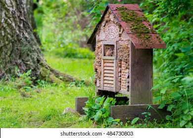 A insect hotel in nature
