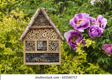 Insect house in a summer garden