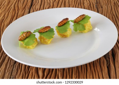 Insects food.Fried silkworm pupae with Chinese steamed dumplingon old wood background.Silkworm pupae are rich protein and good fats.Insects are food future for all people