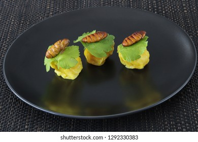 Insects food.Fried silkworm pupae with Chinese steamed dumpling close up on black dish.Silkworm pupae are rich protein and good fats.Insects are food future for all people