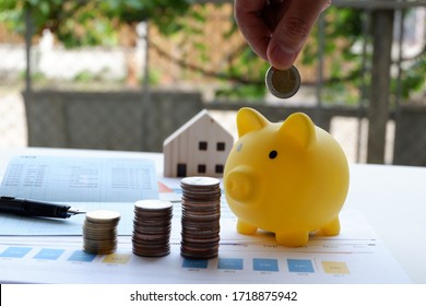 Inserting a coin into a piggy bank , Hand puts a coin in the piggy bank on nature background