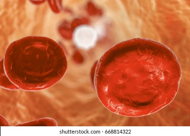Inside blood vessel with red blood cells and leukocytes. 3D illustration
