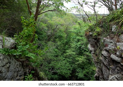 Inside the cloud forest in the Reserva Natural Miraflor, a popular tourist destination near Esteli in the northern mountains of Nicaragua