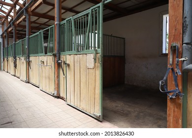 Inside modern clear stable or barn with horse boxes. Passageway view in natural light in the end. Cleared empty stall in the stable keeping sport horses