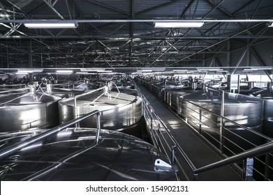 Inside modern wine factory