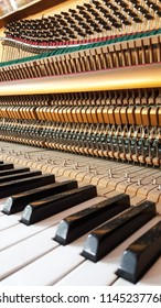 Inside of old piano before tuning, close up shot.