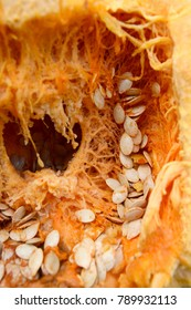 Inside of an orange pumpkin with stringy flesh and lots of large oval seeds