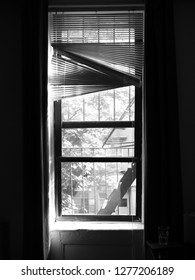 Inside Out Window with Worn Blinds in New York Apartment