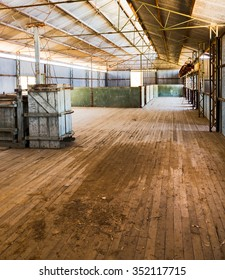 inside a sheep shearing shed Australia