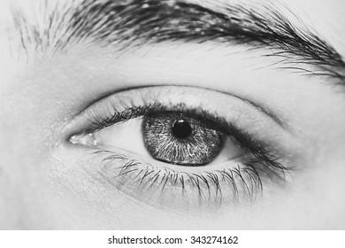 insightful look  eyes boy