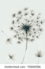 Inspiration from dandelions, the leaves and flowers art design