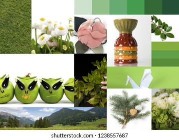 inspiration green nature