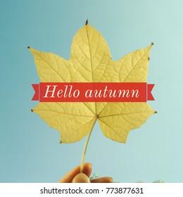 Inspiration motivation quote about life, autumn