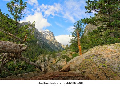 inspiration point  trail in the Grand Teton National Park