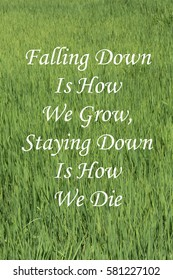 Inspirational message of Falling Down Is How We Grow, Staying Down Is How We Die against a rice field background