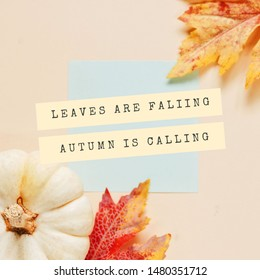 Inspirational motivation quote about autumn with pumpkin and maple leaves on background, holiday and seasonal concept