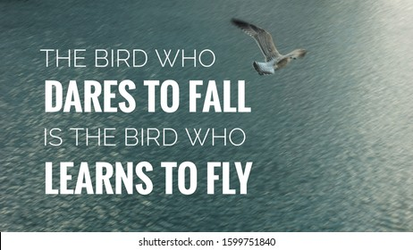 Inspirational motivation quotes, the bird who dares to fall is the bird who learns to fly on photo of flying sea gull over sea in background.